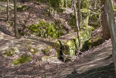 Bruce Trail Duncan Caves / Metcalfe Rock Loop