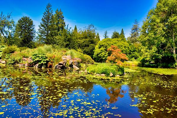 VanDusen Botanical Garden, Vancouver, BC (July 2019)