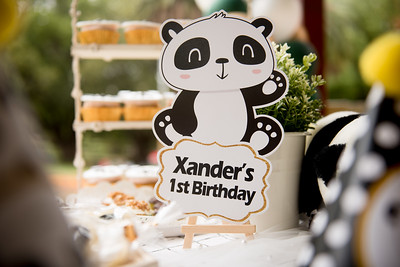 Xander 1st Birthday
