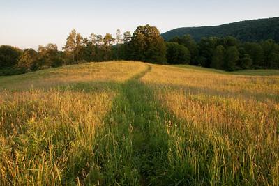 Finger Lakes Land Trust - Lindsay-Parsons