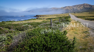 The Pacific Coast, Highway 1