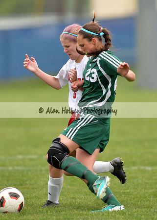 Girls JV Soccer - Williamston at Mason