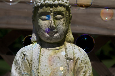 Buddha and Bubbles...