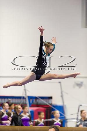1-13-2018 Arlington Aerials Gymnastic Meet