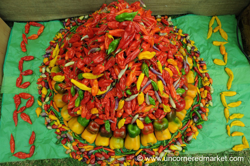 A Mountain of Peruvian Chilies - Mistura Gastronomy Festival in Lima, Peru