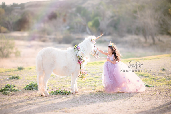 Magical Unicorn Sessions