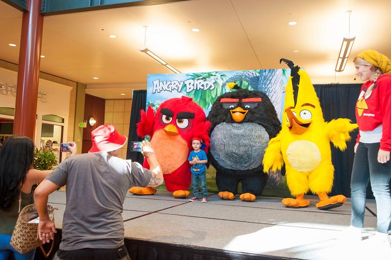 Angry Birds StoneCrest Mall 222.jpg