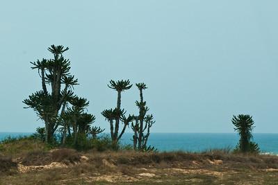 Angola - October 2011