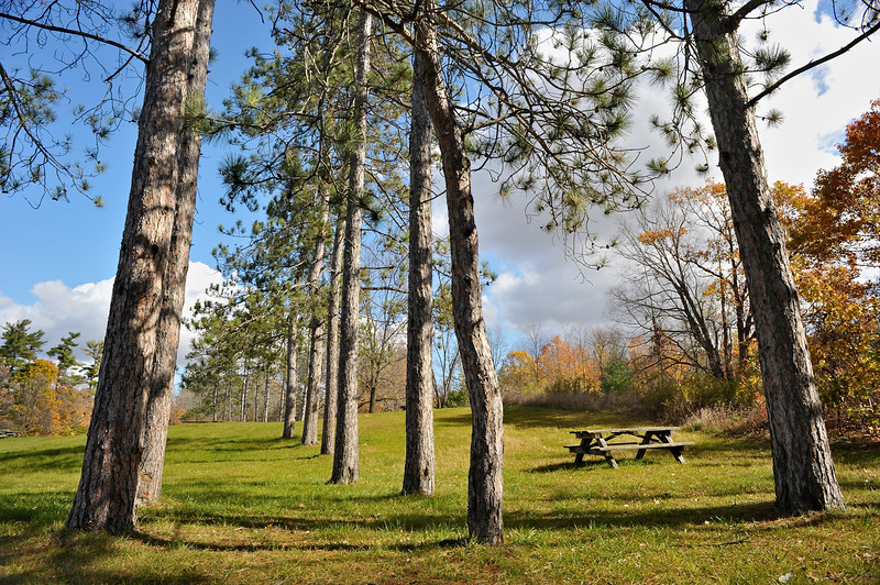 Park view in Ontario