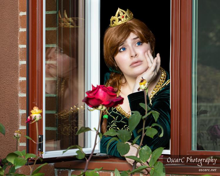 Fiona (Miss Marisa) from Shrek