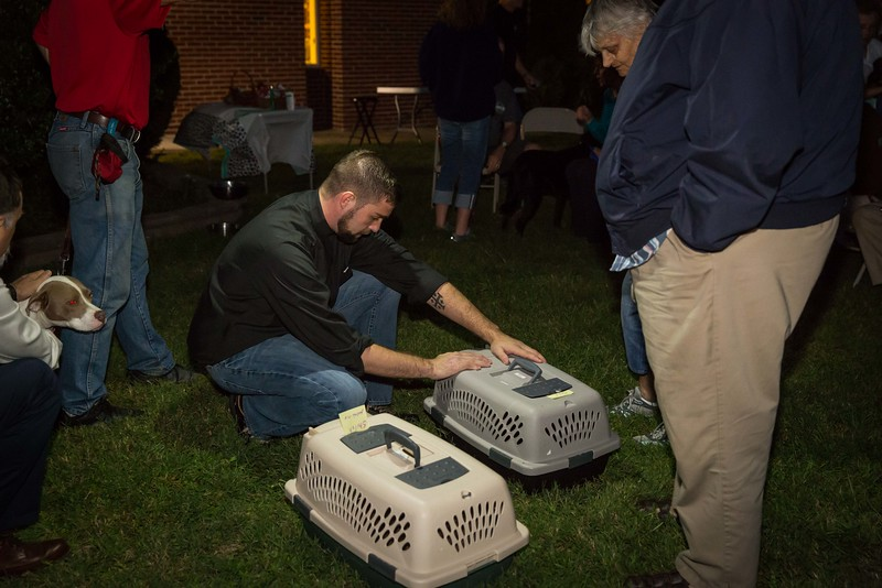 Blessing of the Animals 10-2016 St Pauls (444).jpg