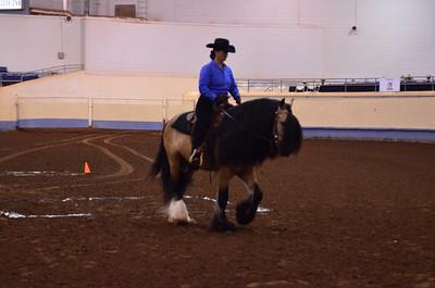 Open under Saddle