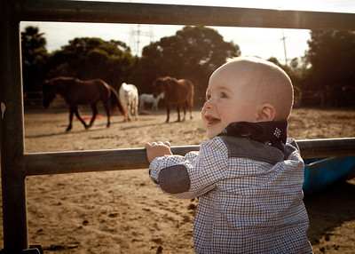 Thomas' 1 Year Old Cowboy Adventure !!!