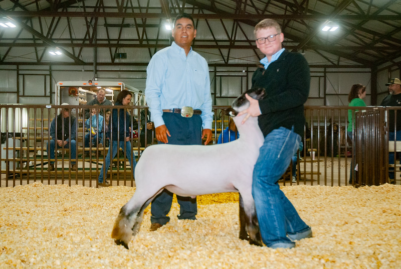 kay_county_showdown_sheep_20191207-123.jpg