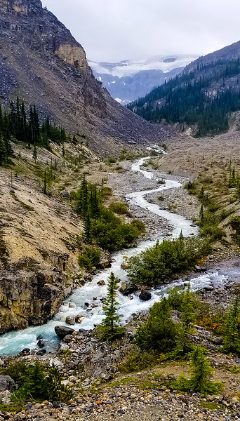 Bow Glacier Falls Stream