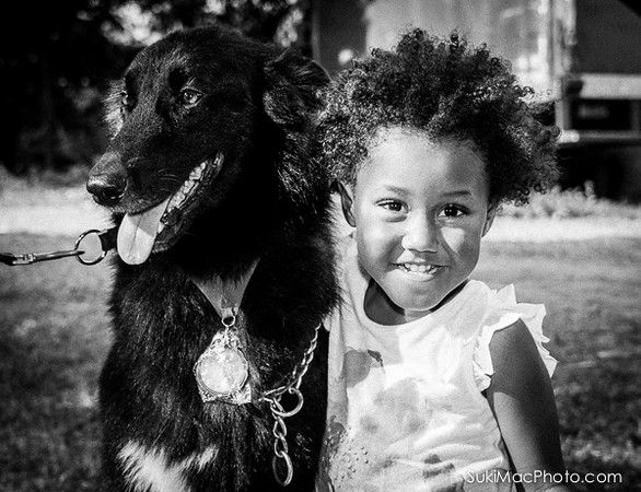 MBAH Dog Show 2014, Low Res Images