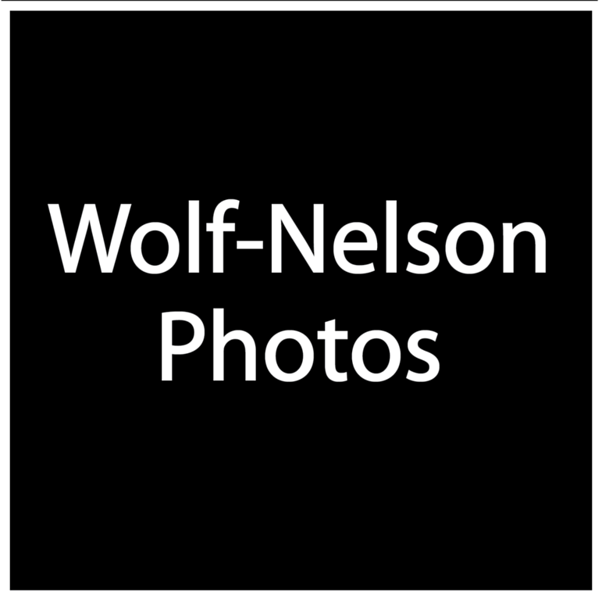 Wolf Nelson Photos.png