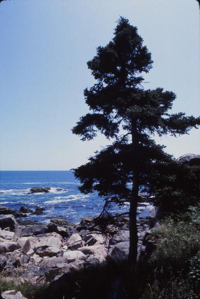 Nova Scotia 1983 - 109.jpg
