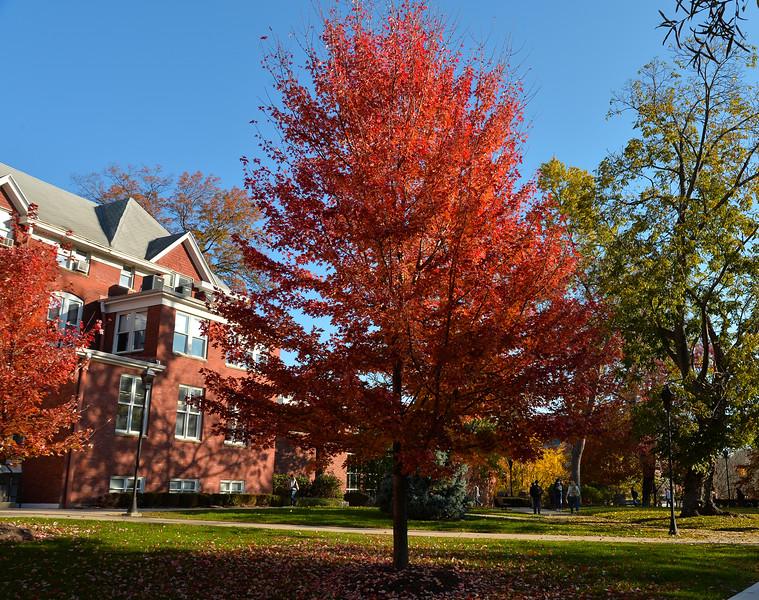 campus2565.jpg
