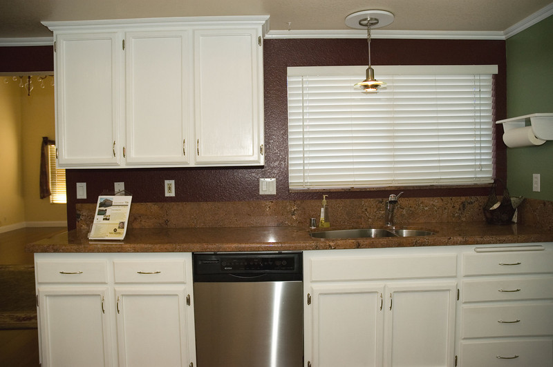 susie_10821 dw and sink am.jpg