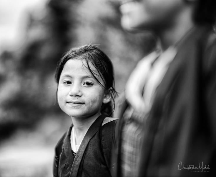 punakha-dzong_chorten-nebu_20120918_9315.jpg