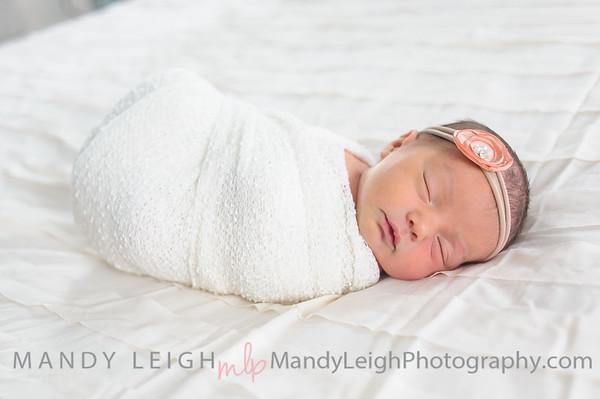 Tayah Hartzler Newborn