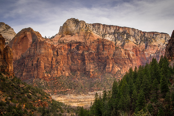 Zion National Park Part 1