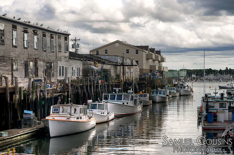 Lobster boats docked on the wharf.