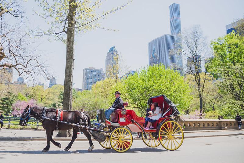 Lynn & David - Central Park Elopement Preview-4.jpg