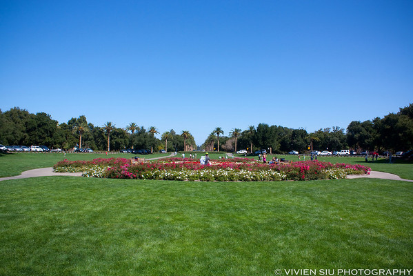 Stanford University and Sunnyvale