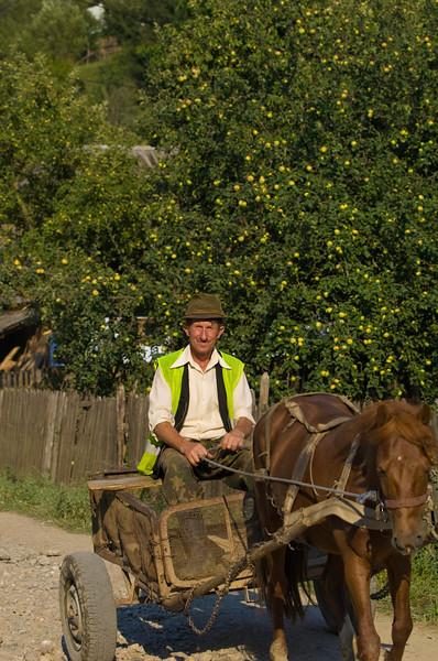 Farmer riding through a village on horse drawn cart, Buhalnita, Romania