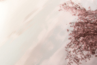 Cherry Blossom Landscapes