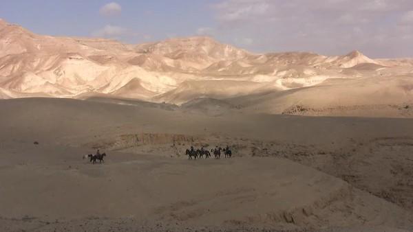 Israeli landscapes