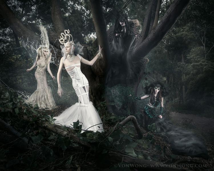 secret.forest-668-Edit.jpg