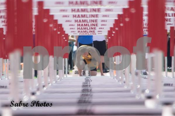 110 Hurdles