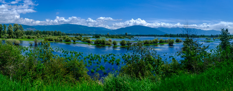 Kootenay River Flooding