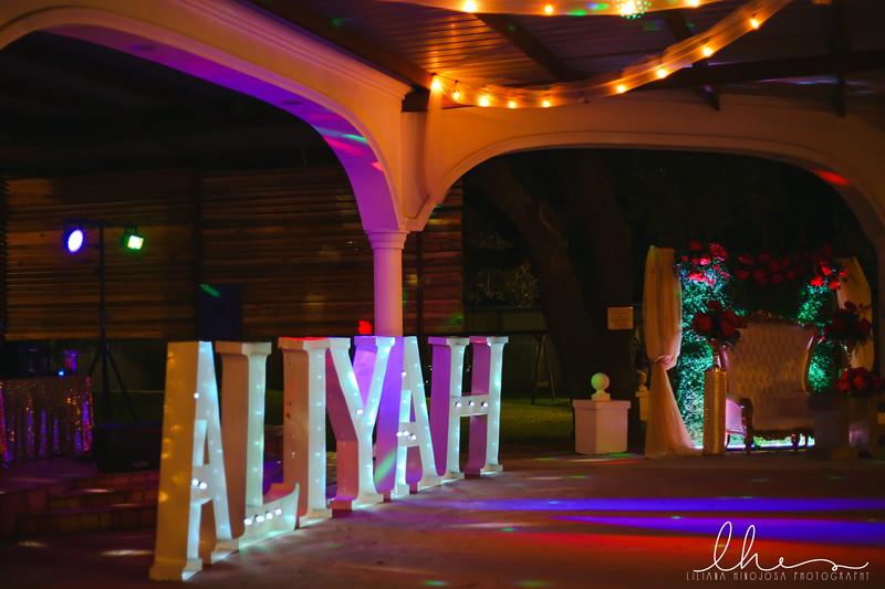 Aliyah10.jpg