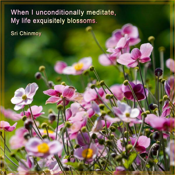 71.when I unconditionally meditate.jpg