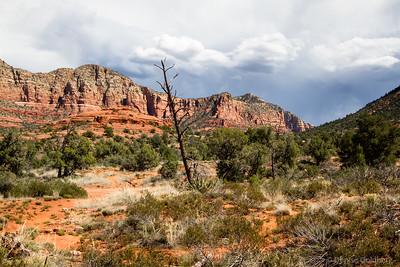 Arizona 2014-03