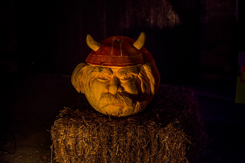 Mike Maney_Pumpkinfest 2017-42.jpg