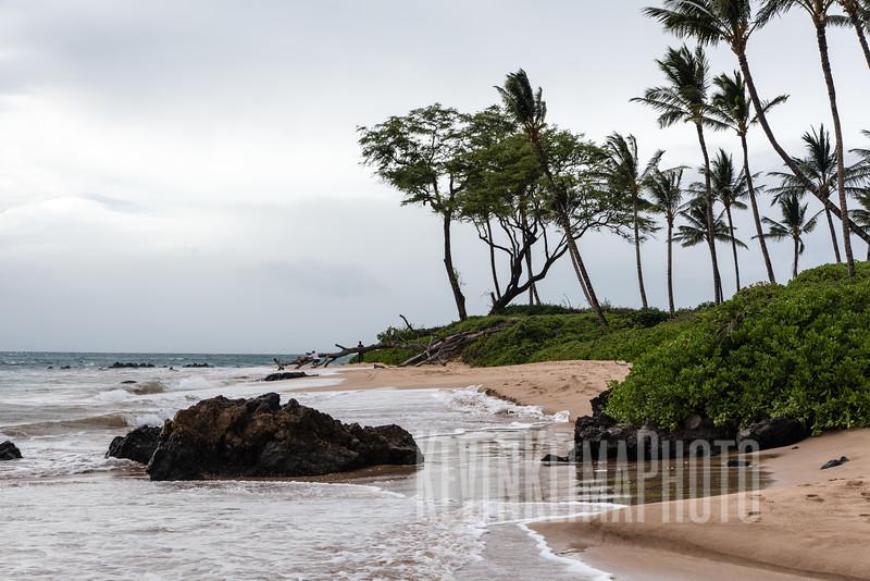 Maui2016-003.jpg