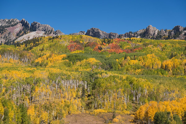 Crested Butte Photos