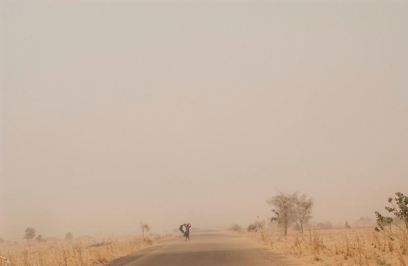 Desertification_11.JPG