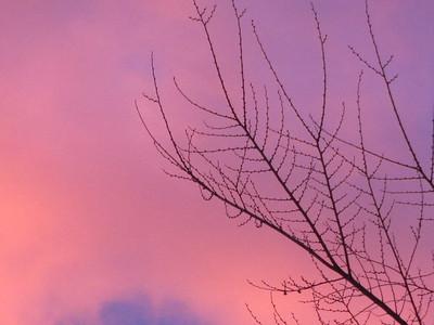 Sunrise - January 6 - Denver, Colorado