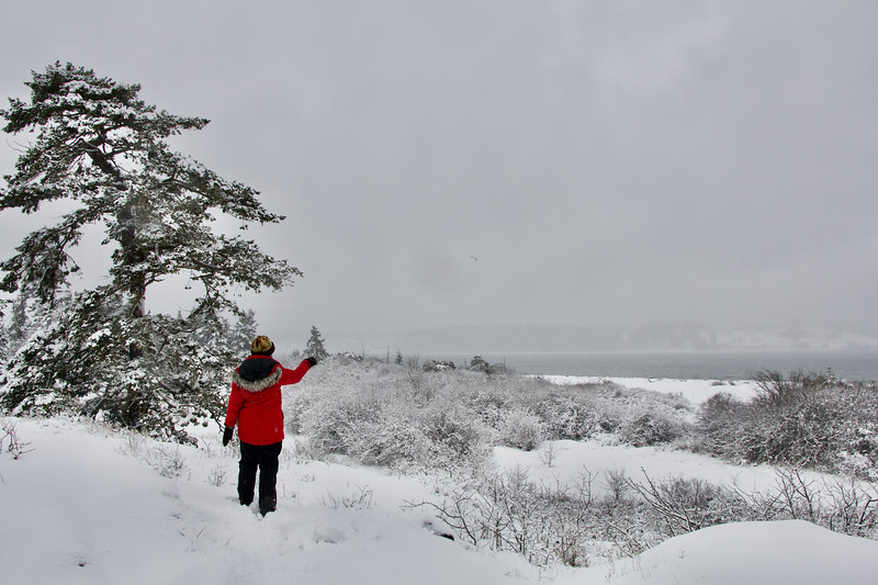 Snow On Island View Beach