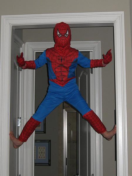 Spiderman-1-4