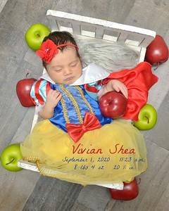 Vivian Shea 2020