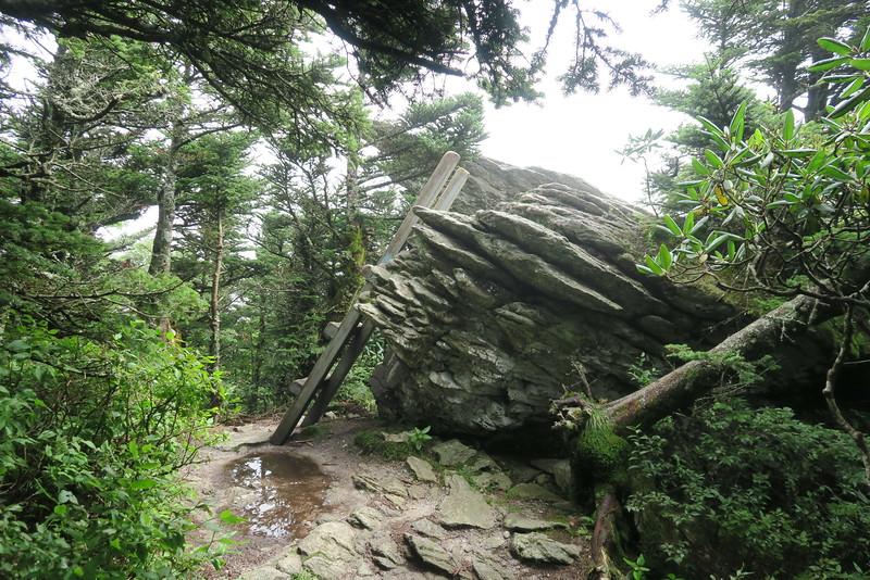 Grandfather Trail -- 5,900'