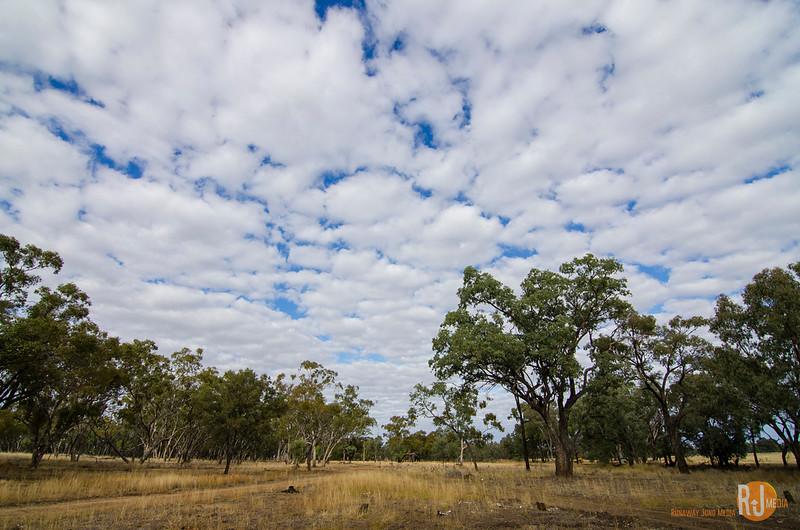 Australia-queensland-charleville-outback-3791.jpg