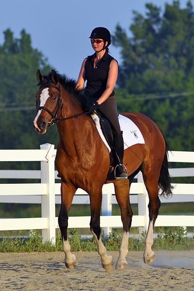 Horses July 2011 758a.jpg